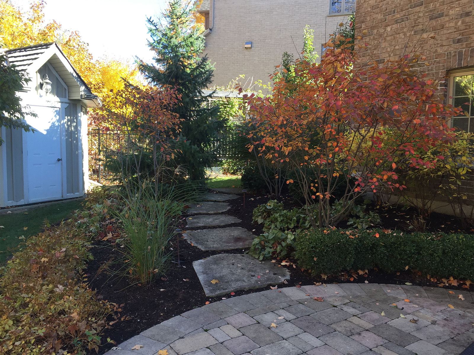 Garden Path through Serviceberry