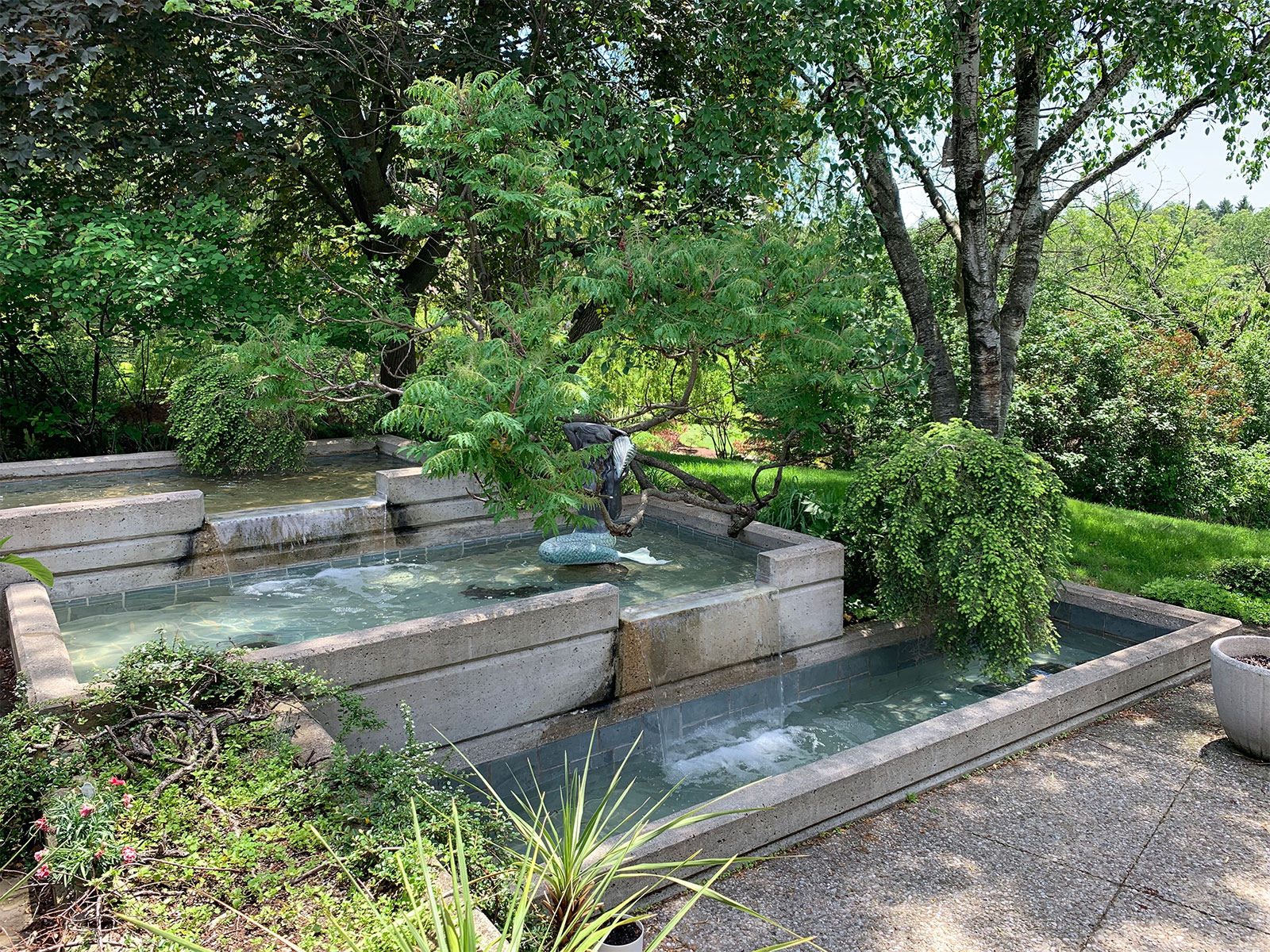 Cascading custom concrete water feature