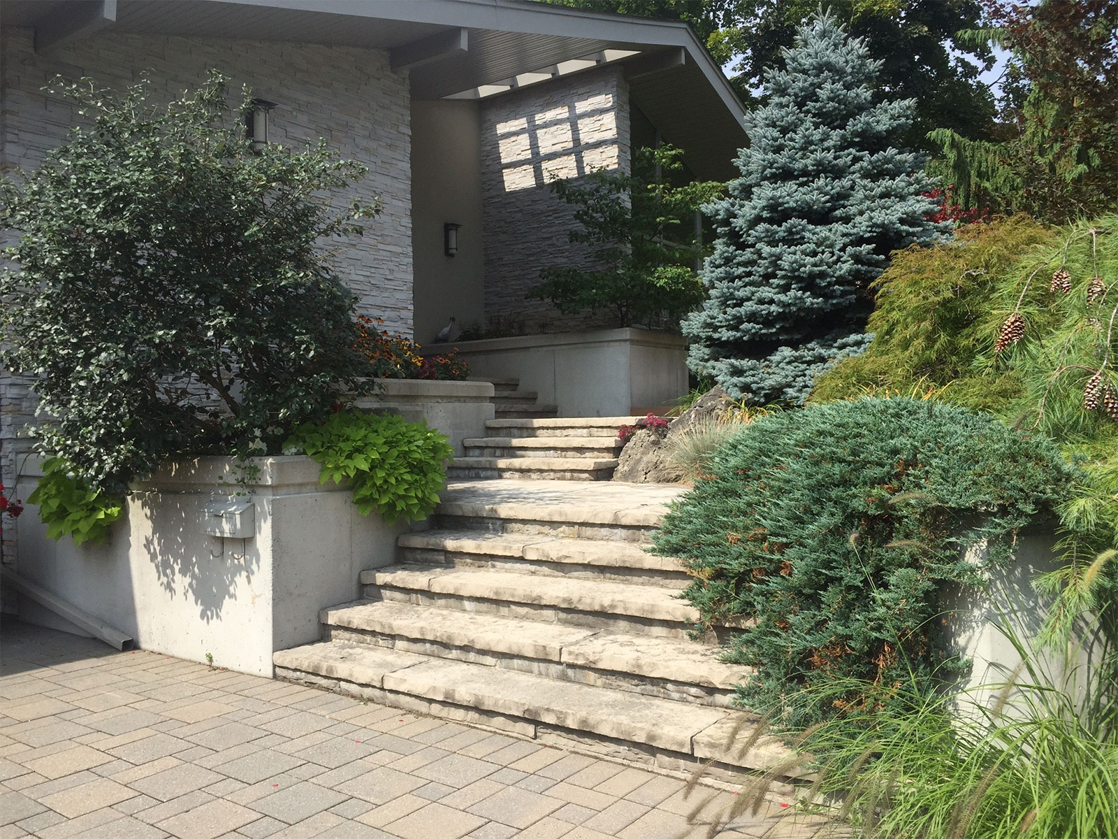 Limestone Flagstone Mortared Steps and Concrete Walls